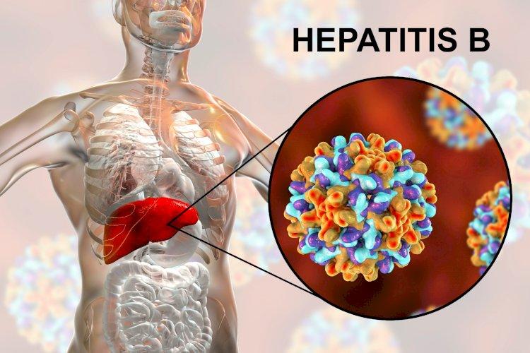 What is hepatitis B?