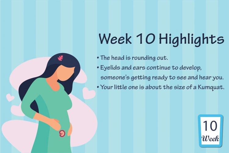 Pregnancy Week – 10