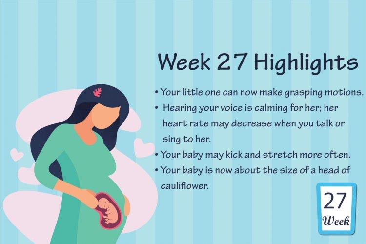 Pregnancy Week – 27