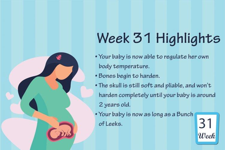 Pregnancy Week – 31