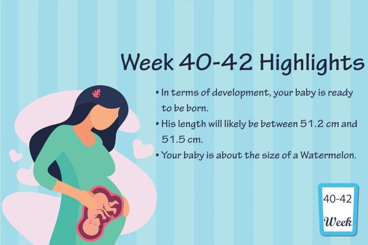 Pregnancy Week – 42