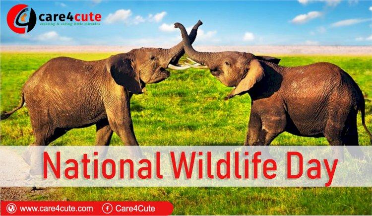 National Wildlife Day 2019