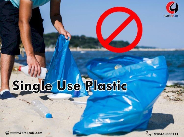 क्या है सिंगल यूज प्लास्टिक और कैसे प्रकृति को नुकसान पहुंचाता है?